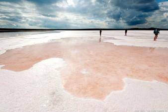 Розовая соль на Кояшском озере