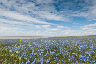 Весна на востоке Крыма